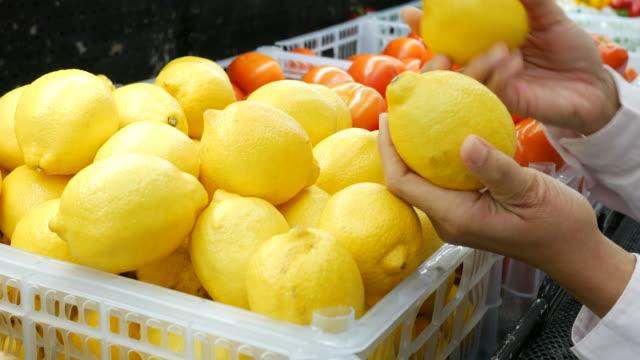 vídeos y material grabado en eventos de stock de mano de mujer compras alimentos frescos orgánicos en supermercado - limón