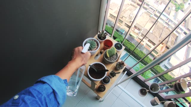 POV-woman's hand while watering cactus at her terrace-modern living POV-woman's hand while watering cactus at her terrace-modern living watering stock videos & royalty-free footage