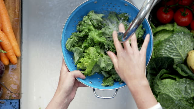 Woman's hands washing kale leaves under running water Directly above shot of woman's hands washing kale leaves under running water. Lockdown shot female is cleaning leafy vegetable in the sink. She is preparing food in kitchen at home. kitchen sink stock videos & royalty-free footage