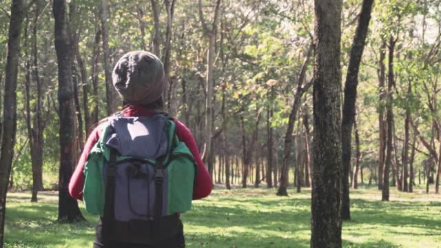 vidéos et rushes de les femmes sont de randonnée et découvrir la forêt naturelle - randonnée équestre