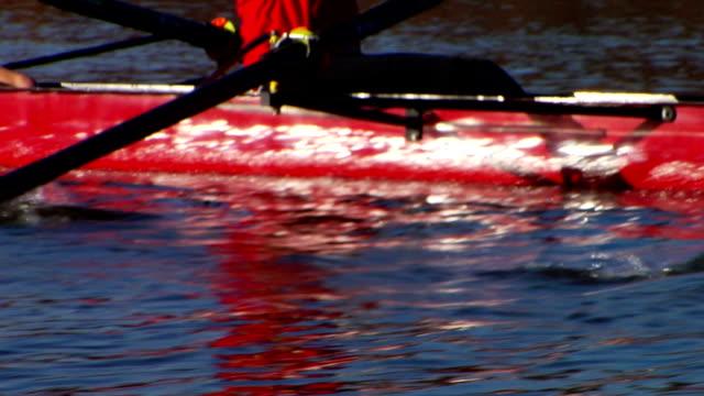 vídeos de stock, filmes e b-roll de mulheres equipe close-up - remo esporte aquático