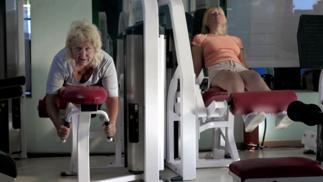 donne che fanno esercizi alle gambe su macchine per il fitness - dorso umano video stock e b–roll
