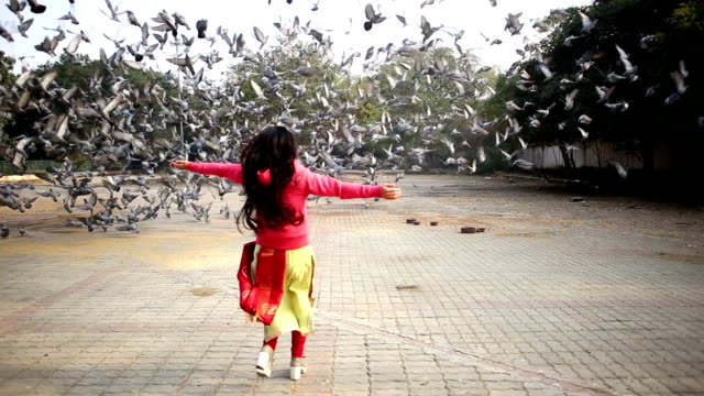 Mulheres voando pombos - vídeo