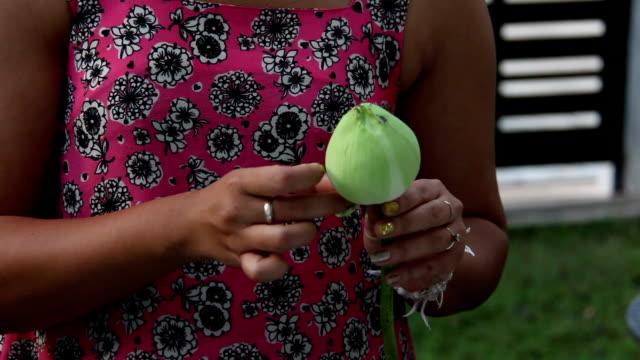 women fold lotus for worship buddha video