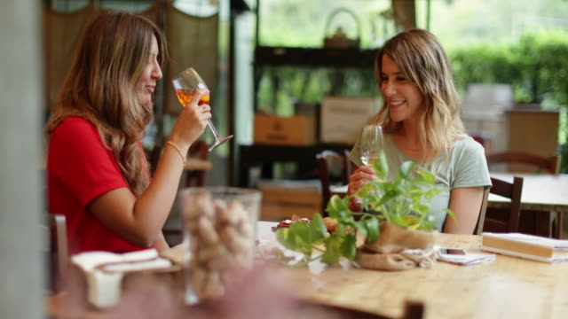 women having italian aperitivo together - amicizia tra donne video stock e b–roll