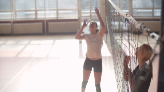 Women in sport - Volleyball Young women playing volleyball. They are team and have training. volleyball sport stock videos & royalty-free footage