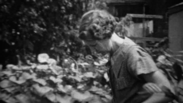 1935: women picking cabbage head from depression era garden. - orticoltura video stock e b–roll