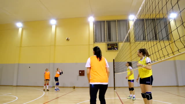 Women playing volleyball Women volleyball team training indoors. volleyball ball stock videos & royalty-free footage