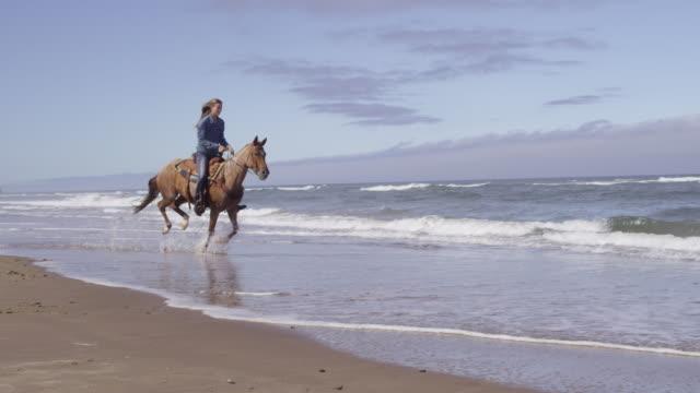 たいまつでビーチで馬に乗る女性 - 動物に乗る点の映像素材/bロール