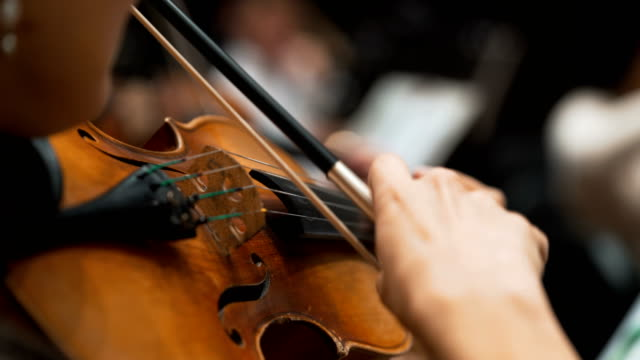 Women violin playing at classical concert. symphonic orchestra musicians Women performs lead violin sole part playing at classical concert. Professional symphonic orchestra musicians at rehearsal, accompanying opera singer at theatre. Audience enjoying music, inner harmony performer stock videos & royalty-free footage