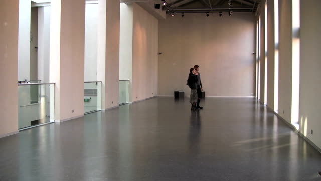 Women visiting a gallery video