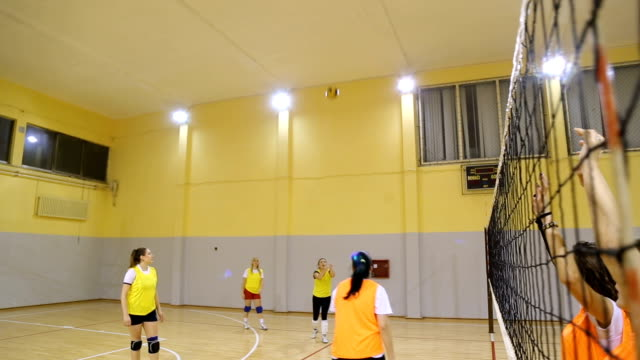 Women volleyball match Women volleyball team training indoors. volleyball ball stock videos & royalty-free footage
