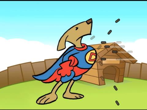 Wonder Dog video
