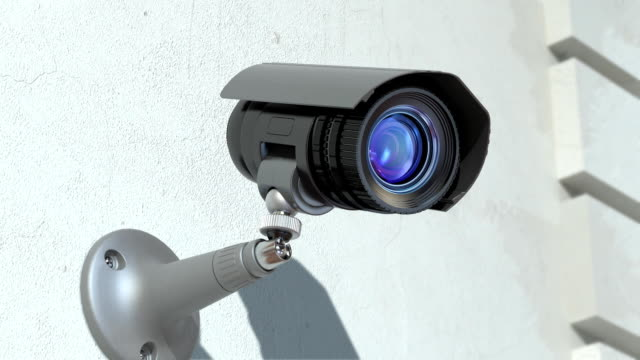 wondered surveillance camera video