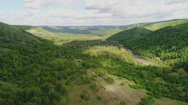 wonderful beautiful green mountain valley. beautiful view from the air. - quadcopter filmów i materiałów b-roll