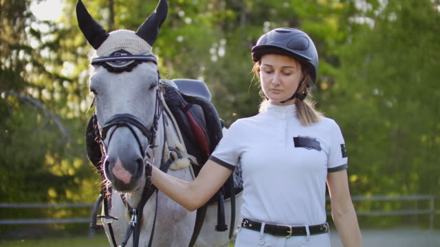 Wonderful walk with lovely horse One walk from professional horsewomen and her lovely white horse in the nature paddock stock videos & royalty-free footage