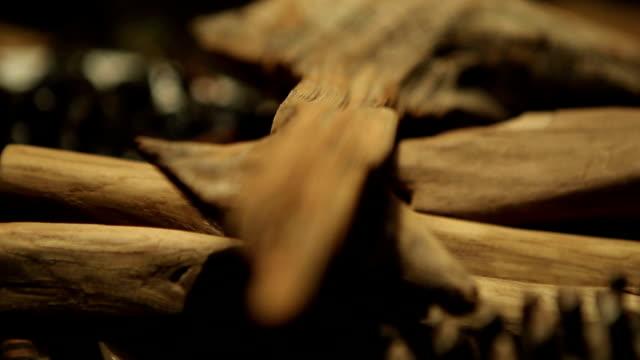 stockvideo's en b-roll-footage met hout-kunst - schors