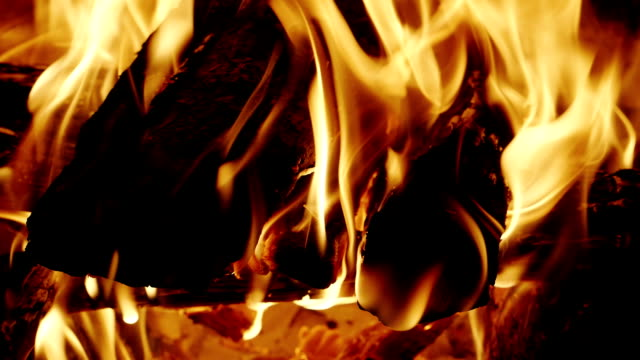 Wood burning in the fireplace video