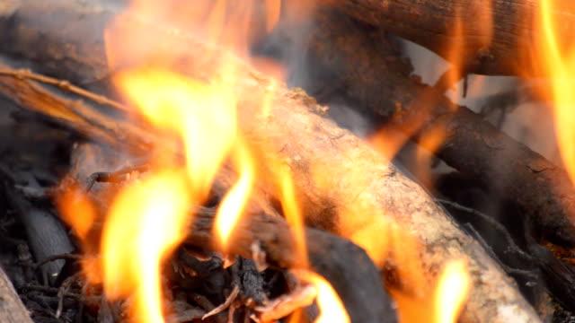 Wood Burns In Fire video