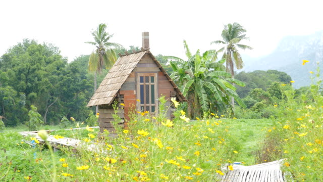 vídeos de stock e filmes b-roll de wood cottage. - isolated house, exterior