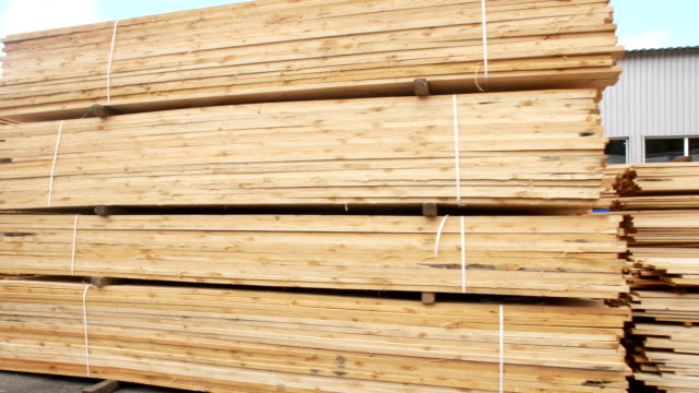 Wood factory stock and lumber board with nature business export Wood factory stock and lumber board with nature business export. timber stock videos & royalty-free footage