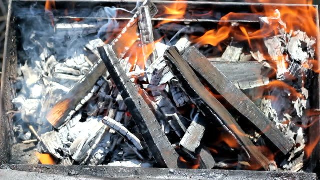 stockvideo's en b-roll-footage met wood fire burning in a barbecue - bewerkt vlees