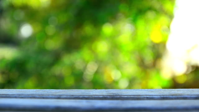 HD Wood floor with blank space and nature green leaf bokeh background video