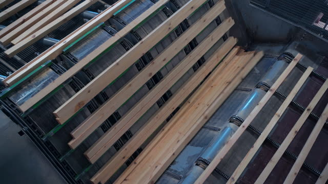 Wood On The Conveyor At The MDF Factory