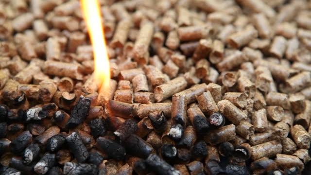 древесных топливных окатышей сжигать в качестве альтернативы источника тепла - биомасса возобновляемая энергия стоковые видео и кадры b-roll