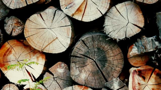 stockvideo's en b-roll-footage met hout stapel voor brandhout - boomstam