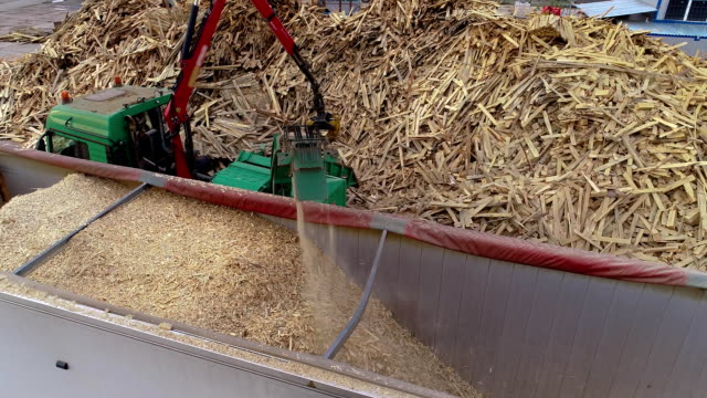 Wood processing for sawdust for the production of fuel briquettes. A large pile of firewood for processing into fuel briquettes Wood processing for sawdust for the production of fuel briquettes. A large pile of firewood for processing into fuel briquettes. biomass renewable energy source stock videos & royalty-free footage