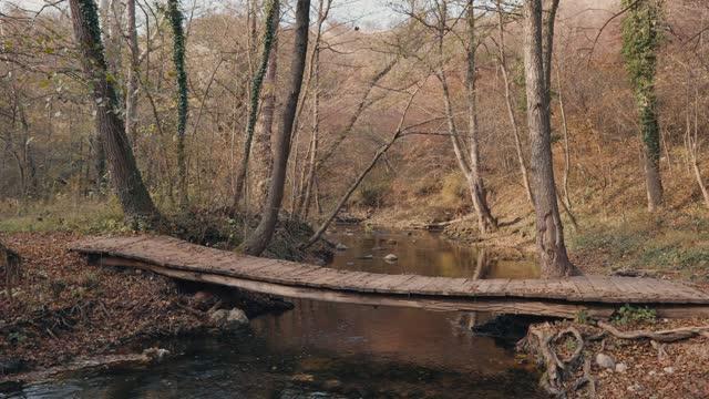 Wooden bridge in autumn