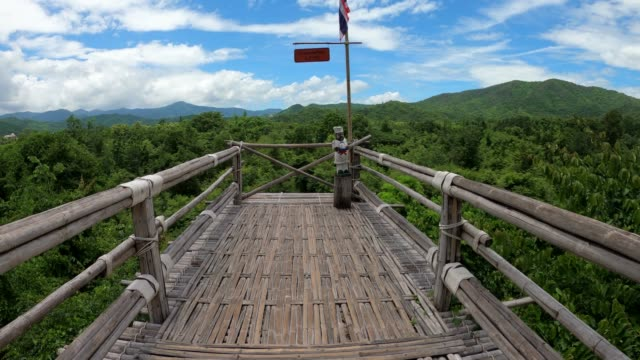 wooden bridge on canopy tree in forest