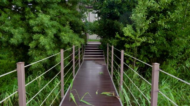 Wooden bridge over the river among green trees. 4K