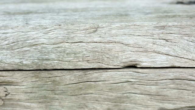 Wooden Floor Texture over Sunshine and outdoor environment, slider dolly from right to left video