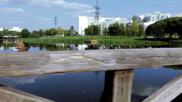 vidéos et rushes de plancher en bois près du lac - pont gênes