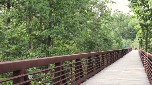 Wooden footbridge along nature hiking path with swaying trees from wind
