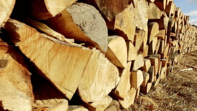 ahşap günlükleri. ağaçların gövdeleri kesilmiş ve yığılmış - şömine odunu stok videoları ve detay görüntü çekimi