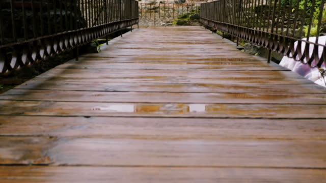 Wooden passageway that leads to historical ruins video