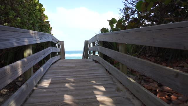 Wooden path over sand dunes with beautiful ocean view