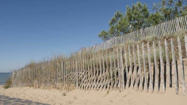 Wooden plank fence next to Atlantic ocean and blue sky slow motion Wooden plank fence next to Atlantic ocean and blue sky slow motion 1920X1080 HD panning  footage - Natural walkway leading to sea beach with pines and other vegetation slow-mo 1080p FullHD video bodyweight training stock videos & royalty-free footage