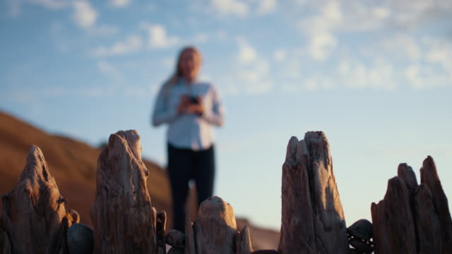 Wooden Posts On Beach With Photographer