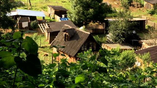 Wooden shacks in a small impoverished community neighborhood in Mexico video