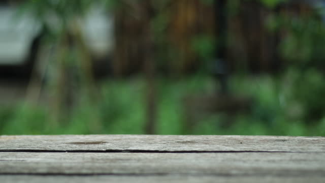 Wooden table with green defocused background