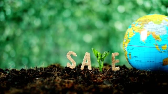 vídeos y material grabado en eventos de stock de texto de madera s, a, v, e sobre verde borroso fondo de la naturaleza.planta de crecimiento para salvar el concepto de tierra. concepto del día mundial del medio ambiente - earth day