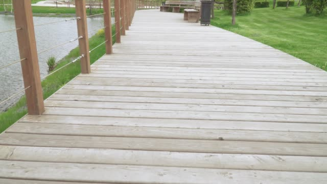 Wooden walkway with railing