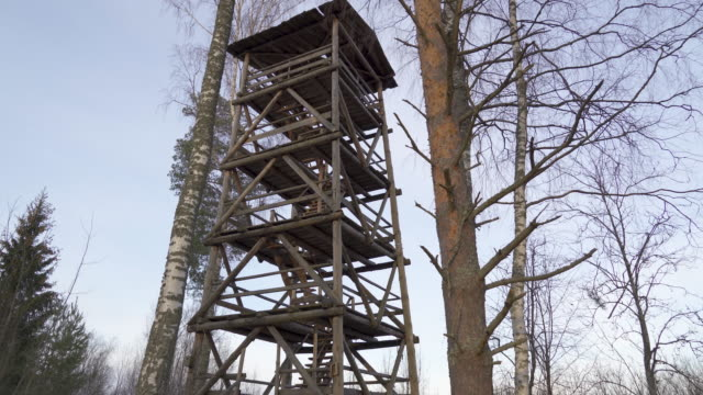 A wooden watch tower with the trees on the side
