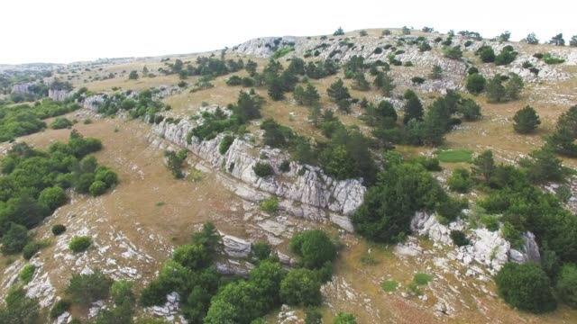 vídeos de stock e filmes b-roll de aerial: woodland on rocky hills - multicóptero