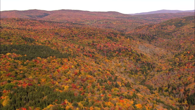 Woods,  Valleys And Ponds  - Aerial View - Massachusetts,  Berkshire County,  United States video