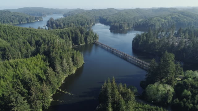 Woody mountains nearby Reedsport, Oregon, in the early morning in the spring. Aerial drone video with the forward cinematic camera motion.